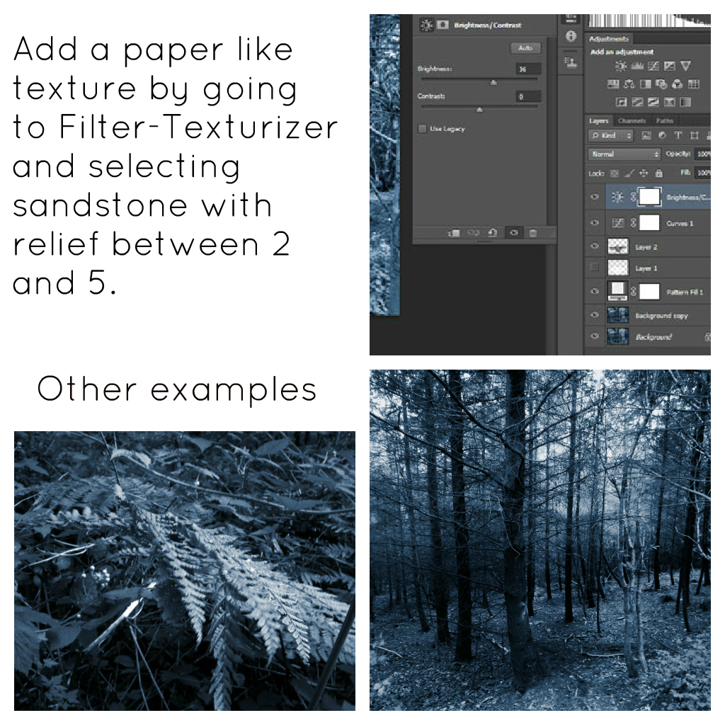 ywrweryrerhhk Cyanotype Photo Tutorial