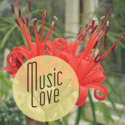 flowermatte February Music love