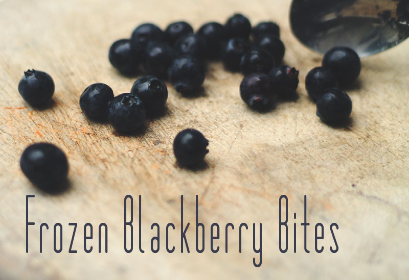 Frozen Blueberry Bites